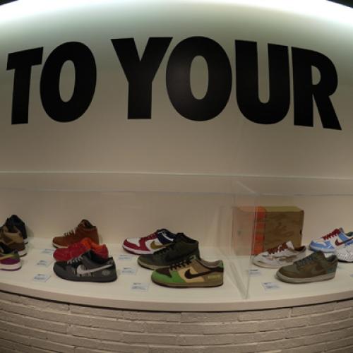Nike Dunk 25th Anniversary